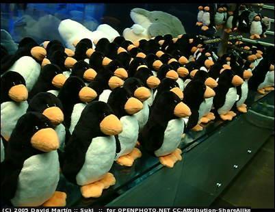 Pingí¼inos de peluche